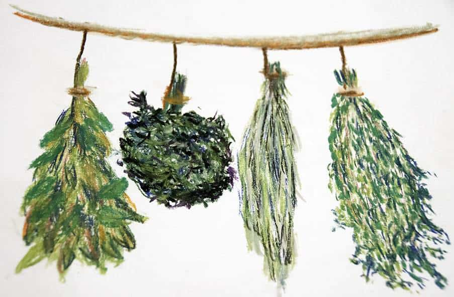 Kräuter zum Trocknen aufgehängt